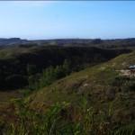 landscape2-copy